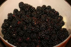 add Blackberries