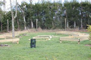 Veggie Garden 2009